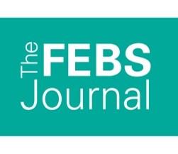 The FEBS Journal